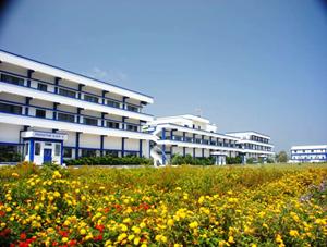 API-Company-in-Hyderabad